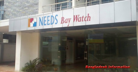 Needs Bay Watch